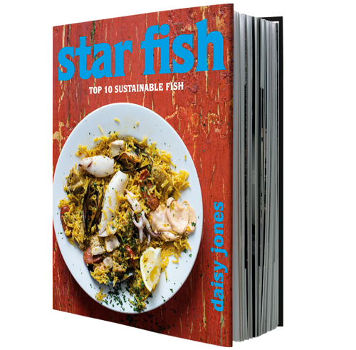 Star Fish by Daisy Jones – Quivertree Publications