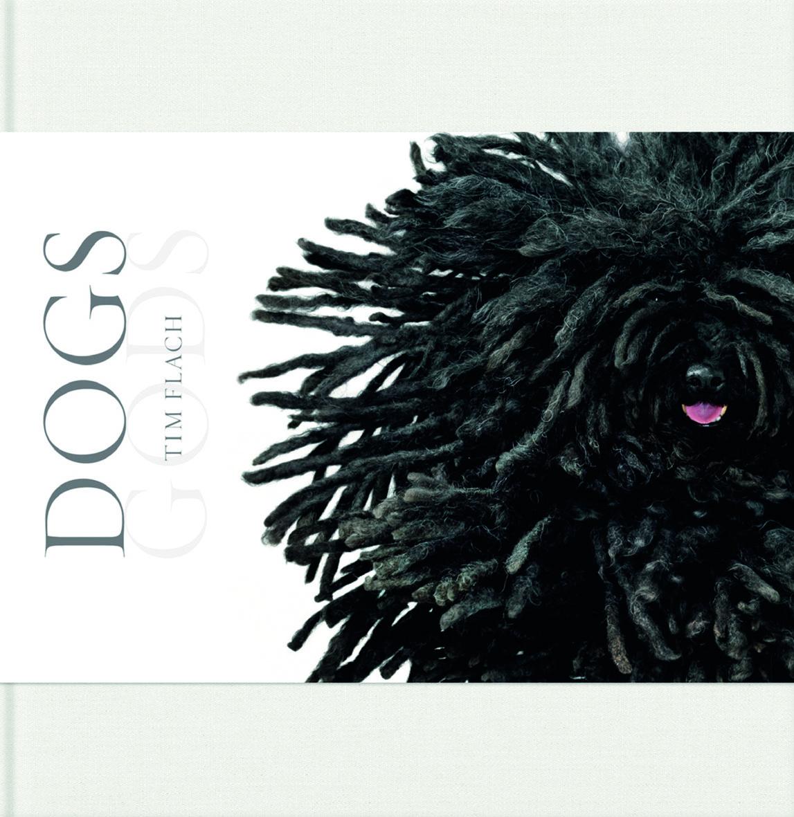 Dog Gods