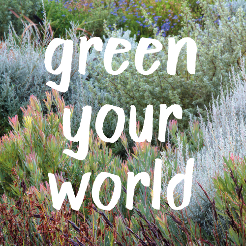 2016 goal #2: Green your world