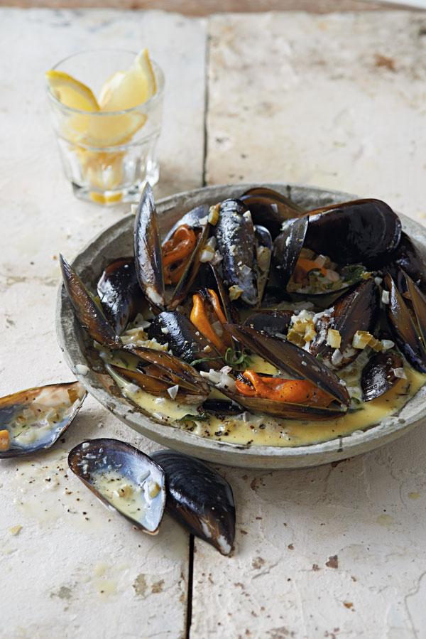 Steamed mussel pot